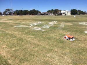 Daniel Morcombe Grass Sign